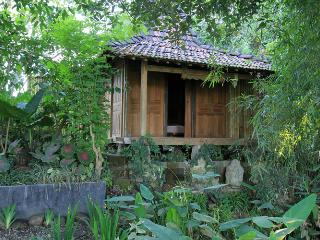Wooden House at the Ricefields, Yogyakarta