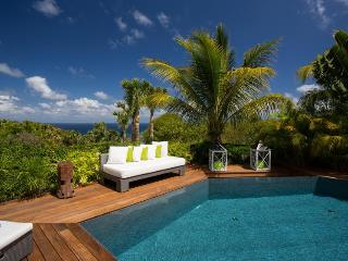 Beautiful Contemporary Villa in Vitet, St. Barthelemy