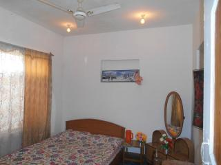 New World Guest house, Srinagar