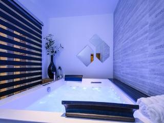 Appartement Spa privé, Lyon