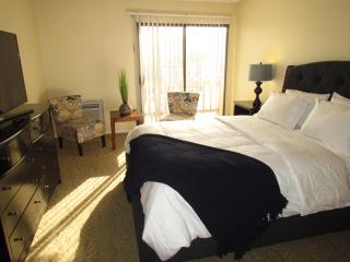Fully Furnished Suite Next to Beverly Hills, Los Ángeles