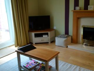 Living room with TV/DVD/CD Radio/Wii games consoles