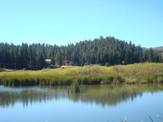 PIKES PEAK RETREAT: PANORAMIC MOUNTAIN/LAKE VIEWS!, Woodland Park