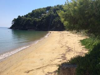 View of our private beach, with golden sand and crystal clear water.