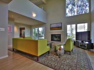 Beautiful 4 Bedroom Sausalito Home