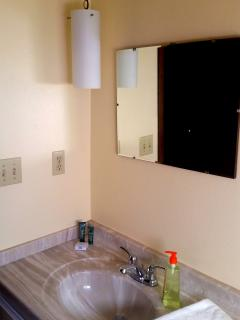 Bathroom with Shower and Pull down Rain showerhead