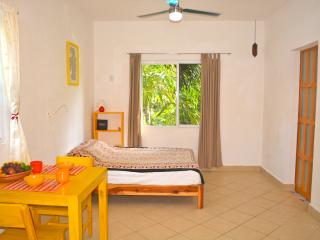 Big quiet studio ,downtown close to mamitas beach, Playa del Carmen