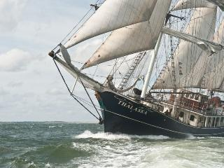 Cabins Available on a Tall Ship!!!, Amsterdam