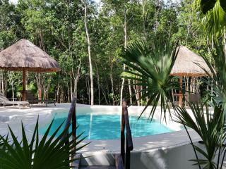 Pura Vida Cancun - Maison d'hotes dans la jungle
