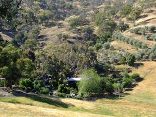 BINDEREE GROVE B&B, Tallangatta