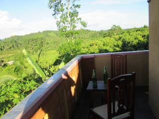 Green view Holiday Villa