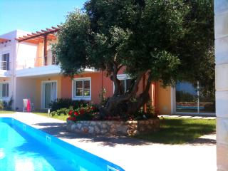 Luxury house with pool, near beaches and sea view., Chorafakia