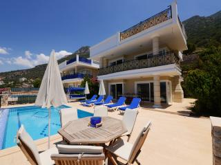 Spacious Four Bedroom Villa with Infinity Pool and Magnificent Views  (KAV217)
