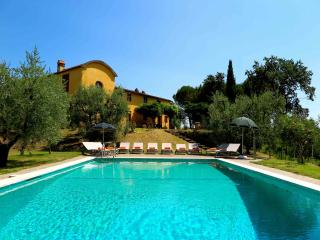 Tuscan Farmhouse on Olive Farm 30 minutes from Florence (sleeps 11), Casalguidi
