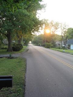 Nice Street, nice neighborhood (photo taken from front of house)