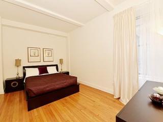 MODERN 2 BEDROOM CONDO IN NEW YORK, New York City