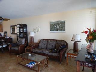 Living Room has comfortable furnishings