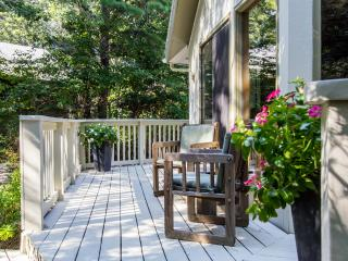 ADELC - Cozy Sunny Contemporary, Deck, Close to Activities, Vineyard Haven