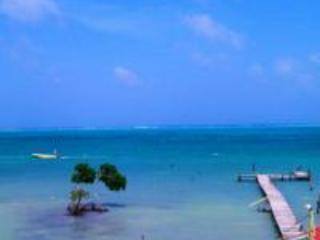 Beautiful Beach Front Condo Unit 10, Caye Caulker