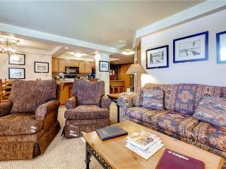 Torian Plaza 407, Steamboat Springs