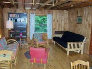 #134 Escape to this classic camp with private beach & dock