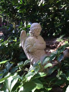 another angel in the garden