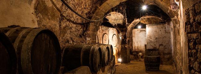 Bodega - Cueva