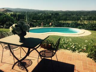 Luxury Villa Private Pool near Rome WIFI