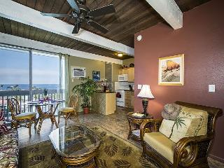 One bedroom condo, right on the edge of town, great Ocean views, AC incl.