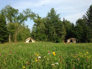 GLAMP THOMAS ON PRETTY ADIRONDACK FARM, North River