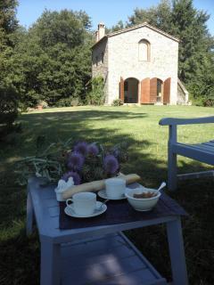 Breakfast al fresco under the pine tree