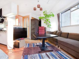 Central and Modern Apartment near Nijo, Kioto