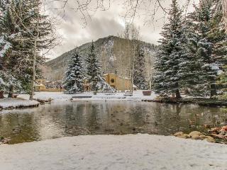 Mountain condo close to slopes w/shared pool & hot tub!, Aspen