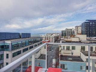 Chic, modern condo w/ great location right downtown - dogs ok!