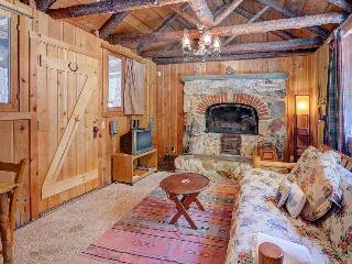 Rustic, warm cabin w/outdoor deck, woodland views - close to town!