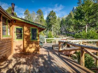 Lodge w/expansive patio & mountain views - Dogs are welcome!