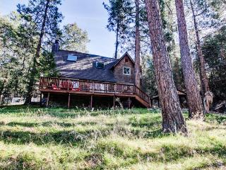 Warm, upscale lodge w/sun deck & wood stove near downtown!