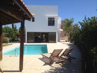 Villa Mazotos Hills 1 holiday rental with private pool