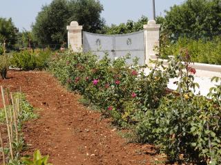 La casa delle rose- Alto Salento, San Vito dei Normanni