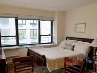 LOVELY STUDIO APARTMENT, Long Island City