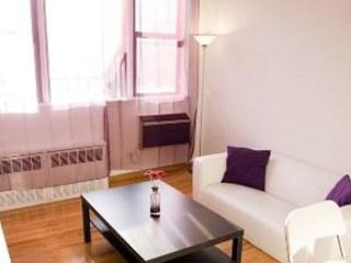 STUNNING AND FURNISHED 1 BEDROOM APARTMENT IN NEW YORK, Nueva York