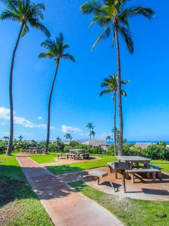 WAILEA EKOLU, #203 - Barbecue Grill and Picnic Area