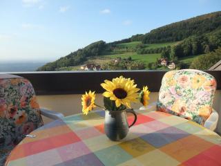 Vacation Apartment in Sasbachwalden (# 6273) ~ RA63057