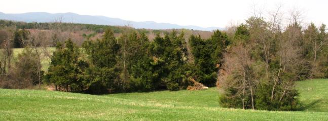 Over 80 acres of walking trails and meadows to explore