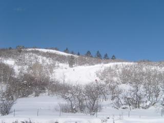 SUNDANCE AVAILBLE- Hyatt Escala-Ski In/Out, Park City