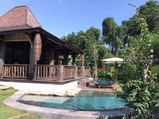 Villa River Garden / Joglo Pool Villa - 3 Bedroom, Kerobokan