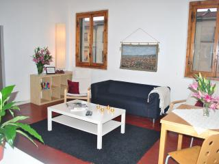 Liahona 4 bedroom Apartment in ideal location, Florence