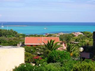 TRILO  MIRTO: elegante trilocale zona spiaggia la Pelosa, 5 persone
