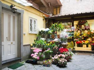 Appartamento nel Centro Storico, Sorrento