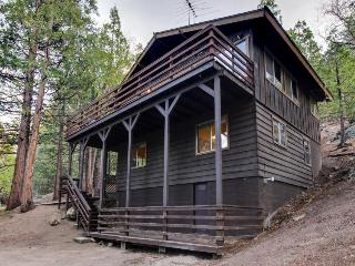 Modern Mtn Home w/ Woodland Views, Fireplace, Wraparound Deck!, Idyllwild